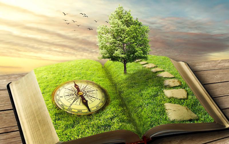 Life Alignment Book